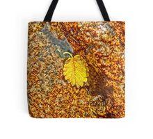 Premature Autumn Aspen Leaf Tote Bag