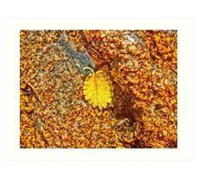 Premature Autumn Aspen Leaf Art Print