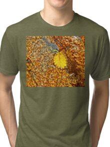 Premature Autumn Aspen Leaf Tri-blend T-Shirt