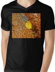 Premature Autumn Aspen Leaf Mens V-Neck T-Shirt
