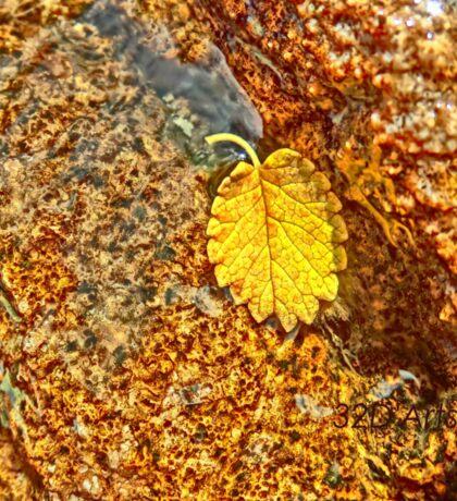 Premature Autumn Aspen Leaf Sticker