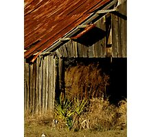 The Old Barn ~ Part One Photographic Print