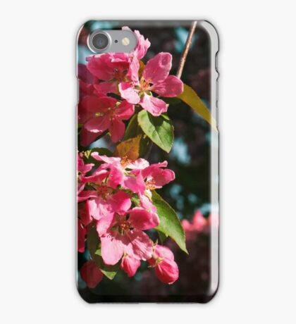 Branch of Blossoms iPhone Case/Skin