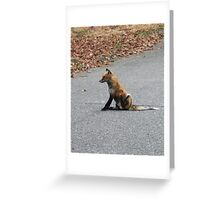 Sitting Fox Greeting Card