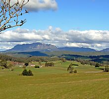 Wilmot Country by Graeme  Hyde