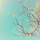 Tree by MickP