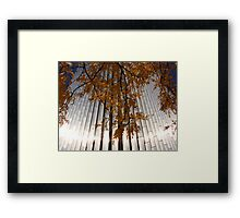 Morning, Ecolab Headquarters, Saint Paul Framed Print