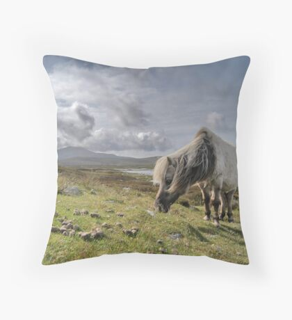 Hebrides, Wild Pony Throw Pillow