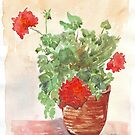 My Geranium would like to see you... by Maree Clarkson