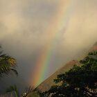 Colors of Hawaii by Nichelle Jones