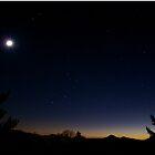 Twilight by Annlynn Ward