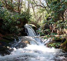Stoney Creek by Annlynn Ward