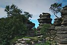 At Brimham Rocks 2 by WatscapePhoto