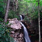 Gentry Creek Falls by Annlynn Ward