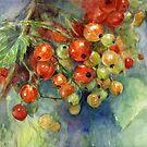 Watercolor Currants Berries painting Svetlana Novikova by Svetlana  Novikova