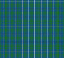 00462 Blue Meadow Tartan  by Detnecs2013
