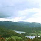 Overlooking Watauga by Annlynn Ward