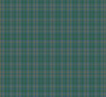 00463 Blue Ridge District Tartan  by Detnecs2013