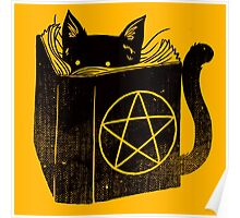 witchcraft cat Poster