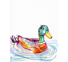 Duck drawing - 2011 Photographic Print