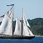 Schooner Virginia on Gloucester Harbor by Steve Borichevsky