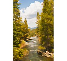 Frazier Creek Photographic Print