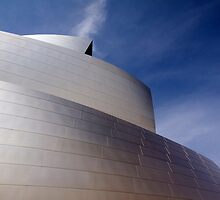 Glowing Metal Skin  - Disney Hall by A.M. Ruttle