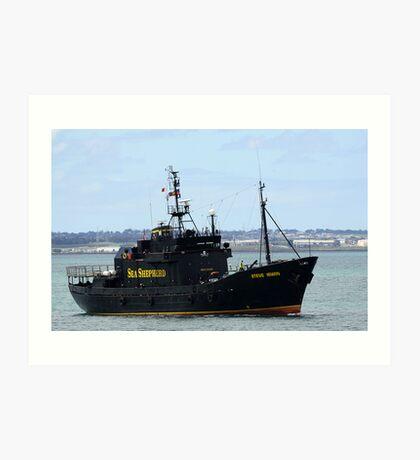 Sea Sheperd Art Print