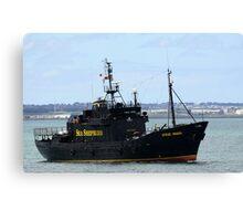 Sea Sheperd Canvas Print