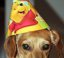 Maggie's First Birthday by RebeccaBlackman
