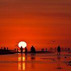 Sanibel Sunrise by Kathy Cline
