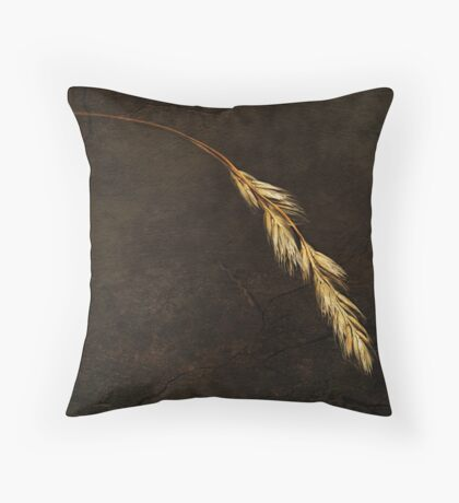 Janet Lee Photography 2011 Throw Pillow
