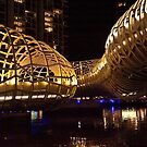 0954 Web Bridge by night by DavidsArt