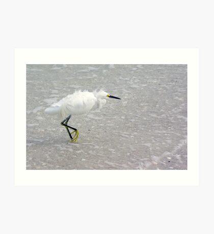 Egret In Wind Art Print