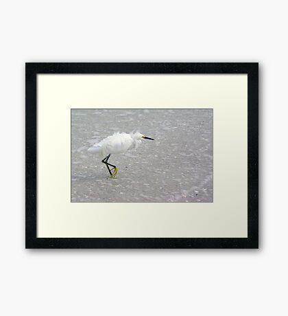 Egret In Wind Framed Print