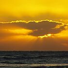 Yellow Sunset by Karen Checca