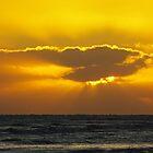 Yellow Sunset by Karen Checca