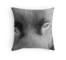 Charcoal Road Throw Pillow