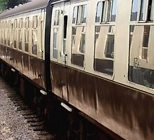 Train in Train by kalaryder