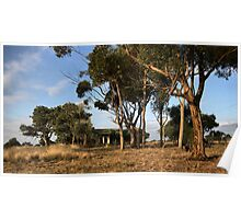 Country Blue Stone Home Poster