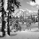 Glorious, Beautiful, Mt. Shuksan by Appel