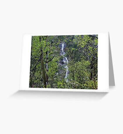 Waters in the Forest Greeting Card