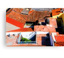 Roof Puzzle Canvas Print
