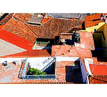 Roof Puzzle Photographic Print