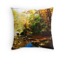 The gravity of colours Throw Pillow