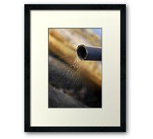Widow's Web Framed Print