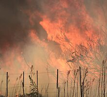 Bushfire approaching by BobEdwards