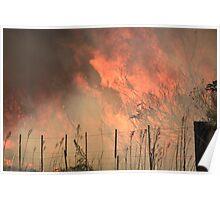Bushfire approaching Poster
