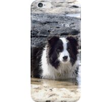 Ollie........this spa pool needs heating.......! iPhone Case/Skin