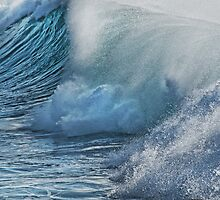 Big Surf by Dianne English
